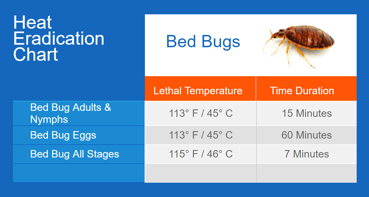 Apartment Building Has Bed Bugs bed bugs - thermapure